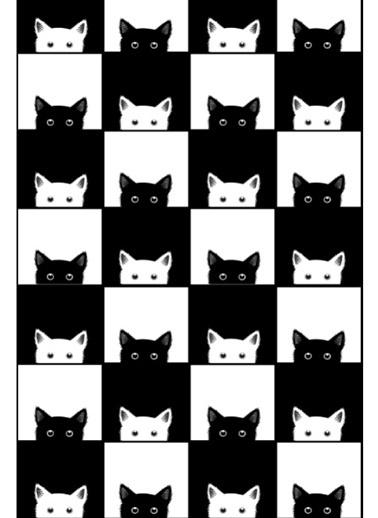 Soley Black-White Djt. 40x60 Banyo Paspası Renkli